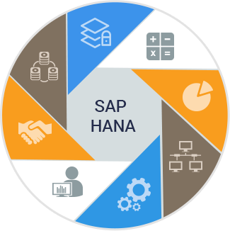 important-area-implemented-sap-hana